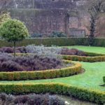 Hecken – Pflanzen & Pflegen