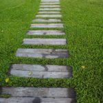 Das Anlegen von Rasen